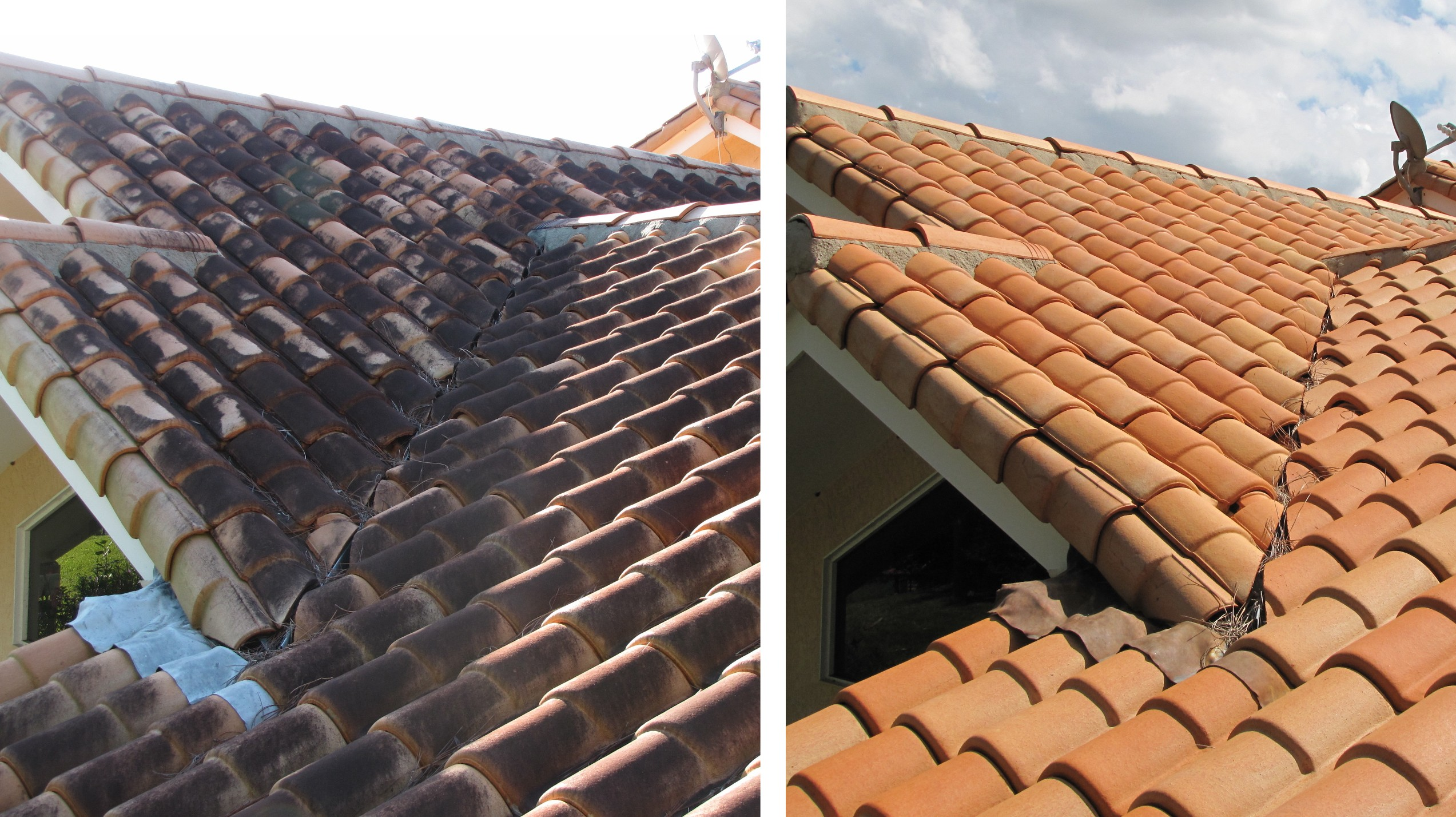 Pressure Washing Clermont: Clermont Area Roof Cleaning