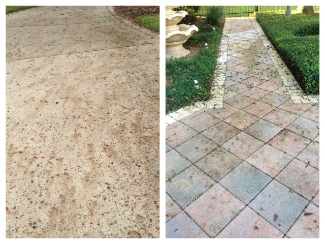 Acorn Stain Cleaning Orlando