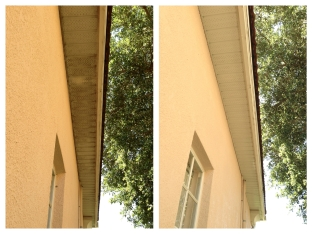 soffit and Eave washing Orlando